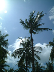 サムイ島の天気29sep