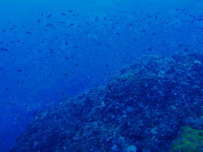 サムイ島の天気 チュンポーン