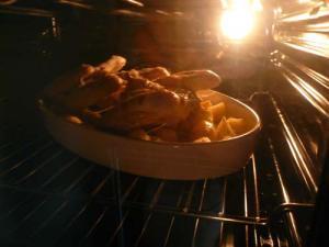 in forno con pollo