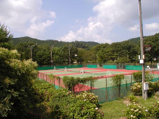 08.09.6.1.テニス