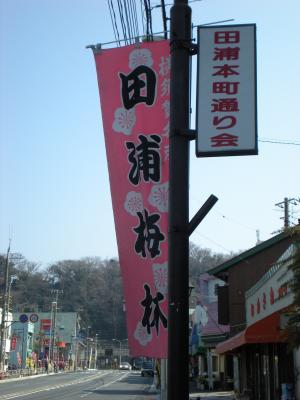 横須賀田浦梅の里10-02