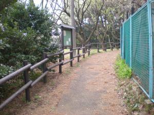 横浜神奈川・港北散策-04