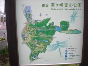 茅ヶ崎里山散策-07