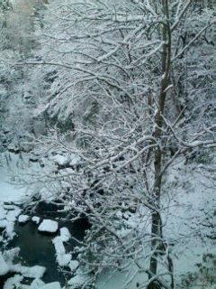 <br />雪景色 歌登