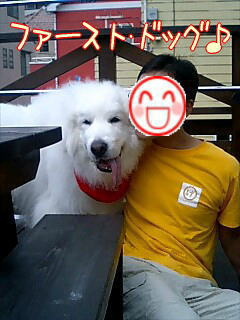 safirstdog.jpg