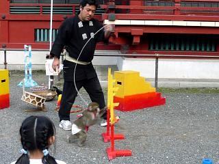 浅草寺(猿回し2)