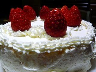 クリスマスケーキ(アップ)