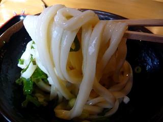 のぶや(生醤油ヲタ撮り)