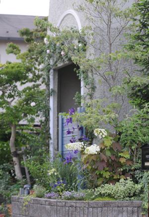 blueg2009608-1.jpg