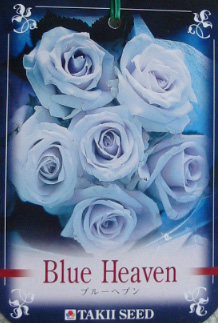 blueheaven.jpg