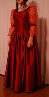 dress2009122-1a.jpg