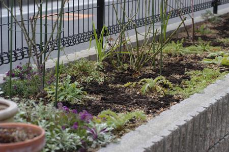 fence2009118.jpg