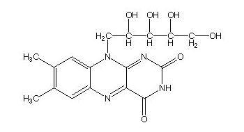 vitaminB2.jpg