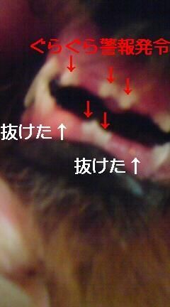 20090213120153.jpg