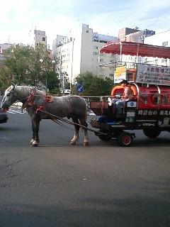 北海道4馬