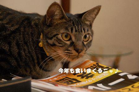 20090101kotetsu2.jpg