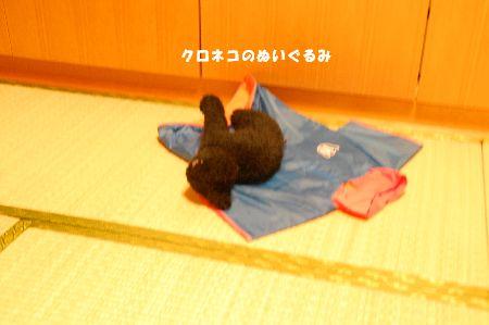 20090207kotetsu4.jpg