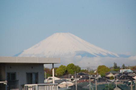 20090415fuji.jpg