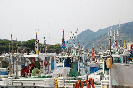 20090503yui.jpg