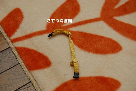 20090621kotetsu.jpg
