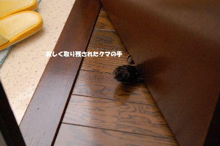 20090630kotetsu2.jpg