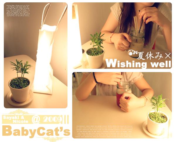 babycats 2
