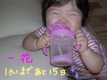 BirthDayカウントダウン☆あと15日
