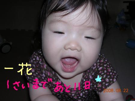 BirthDayカウントダウン☆あと11日
