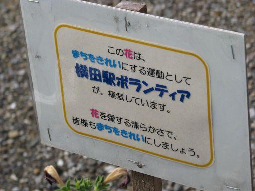 JR久留里線 横田駅 花壇備え付け小看板