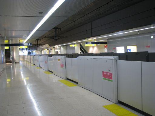 首都圏新都市鉄道つくばエクスプレス みらい平駅 ホーム全景
