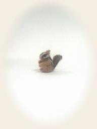 羊毛フェルト☆超ミニミニサイズ 記録更新 !?