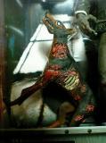 bh-zombie-03