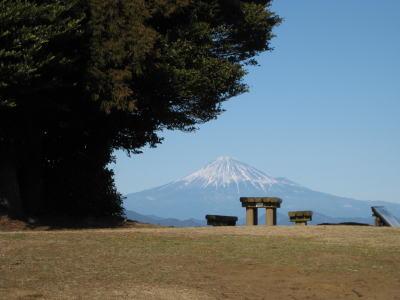 100207hanazawa6.jpg