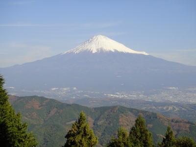 1011shiratori.jpg