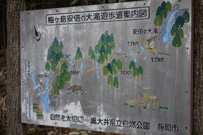 10221umegashima1.jpg