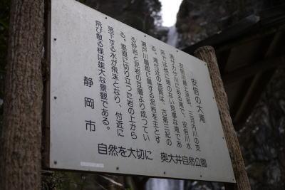 10221umegashima7.jpg