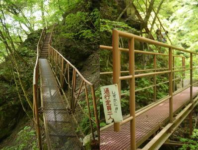 1165ojiragawa10.jpg