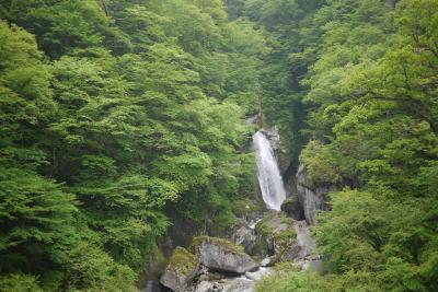 1165ojiragawa9.jpg