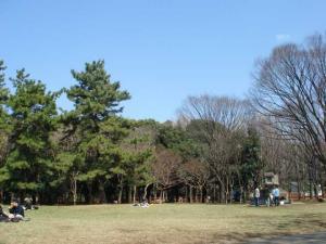 20060325_01.jpg
