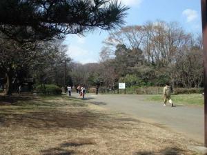20060325_02.jpg