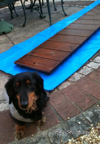 deck2_20110114235746.jpg