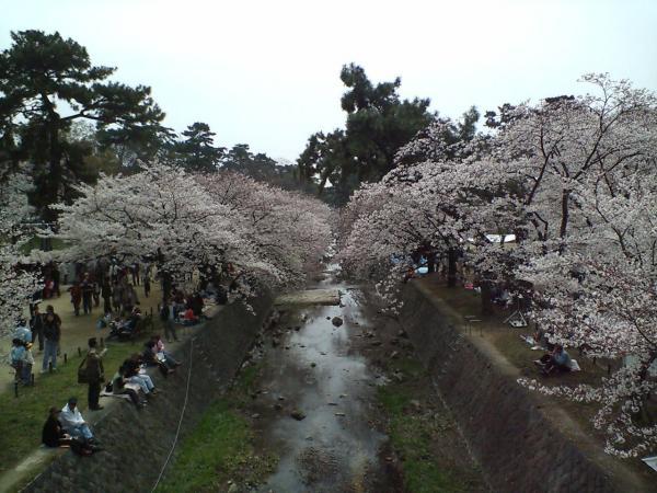 苦楽園口駅前2009.04.05