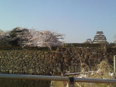 姫路城090411.jpg