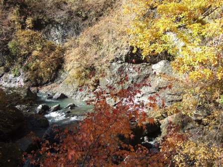 大柳川渓谷1
