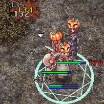 群れるかぼちゃ