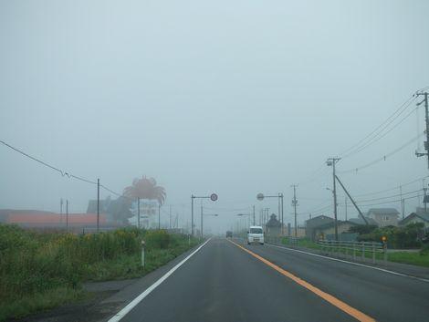 090805-kiri1.jpg