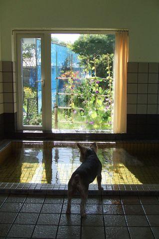 090825-ofuro1.jpg