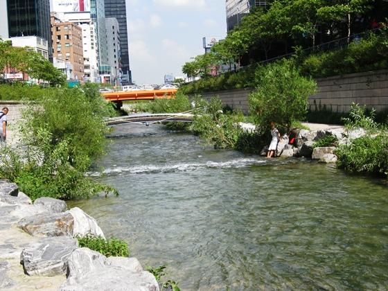 river006.jpg