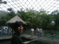 acquarium4