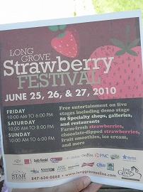 s-20100626StrawberryFest@LG (2)